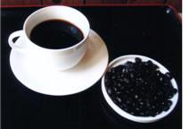 エクアドル産 フェアトレード 有機無農薬コーヒー